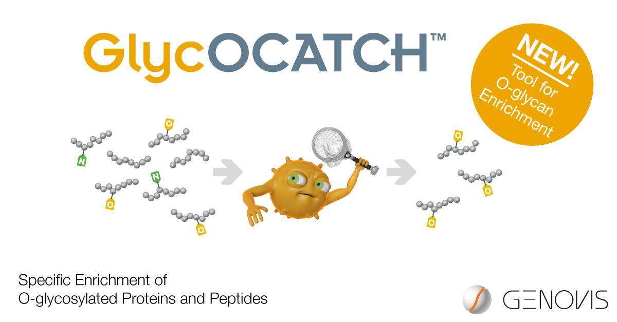 GlycOCATCH-launch