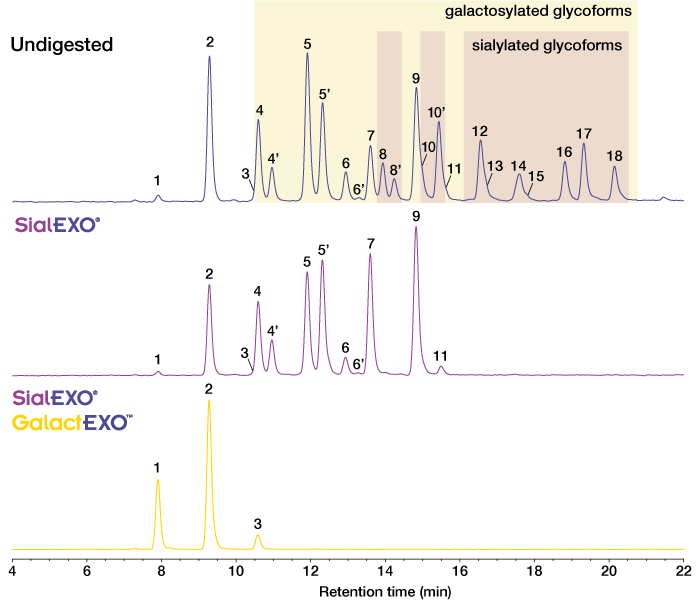 GalactEXO for Released Glycan Trimming Galactosidase