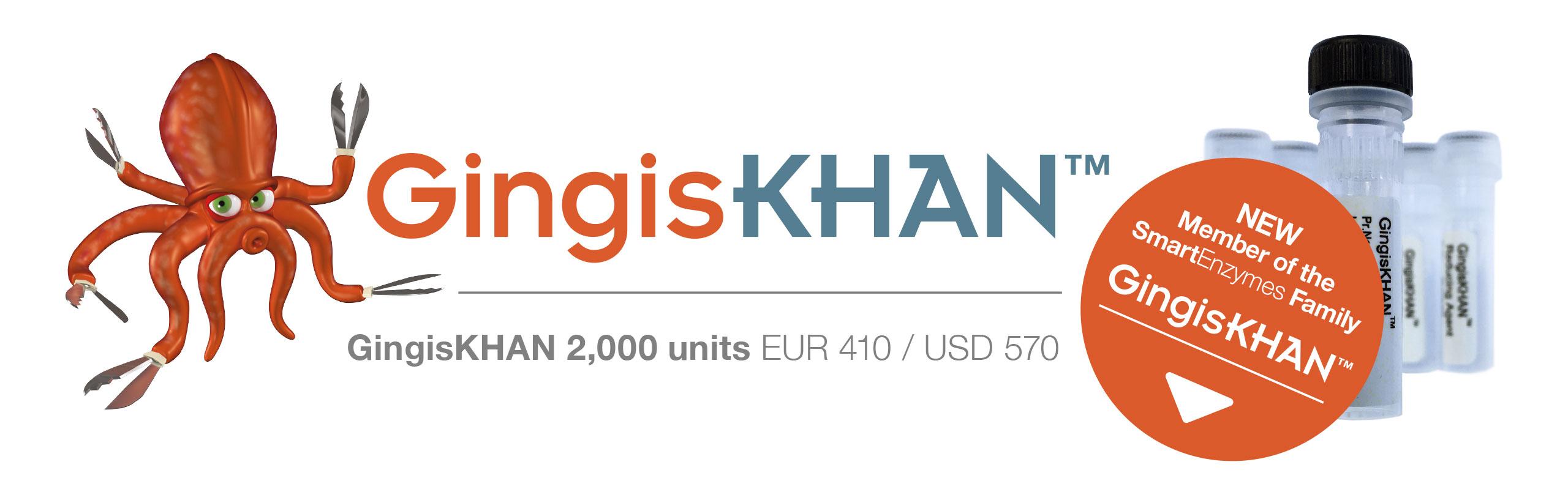 GingisKHAN_Banner_2560px