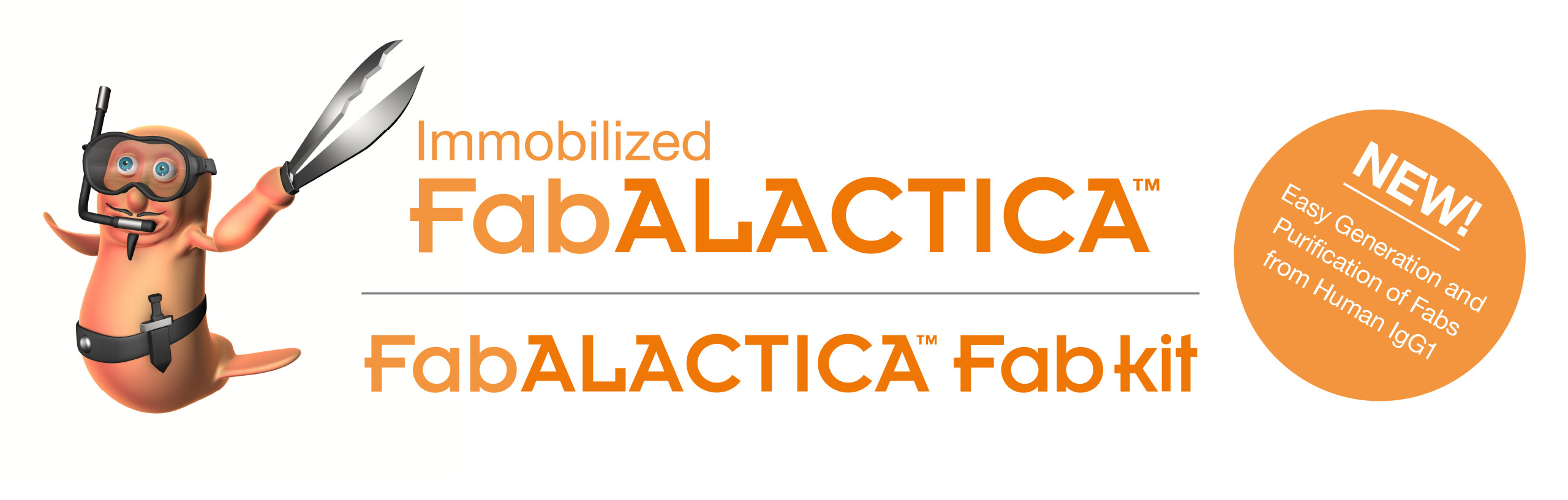 Immobilized_FabALACTICA_Banner_2560x817px