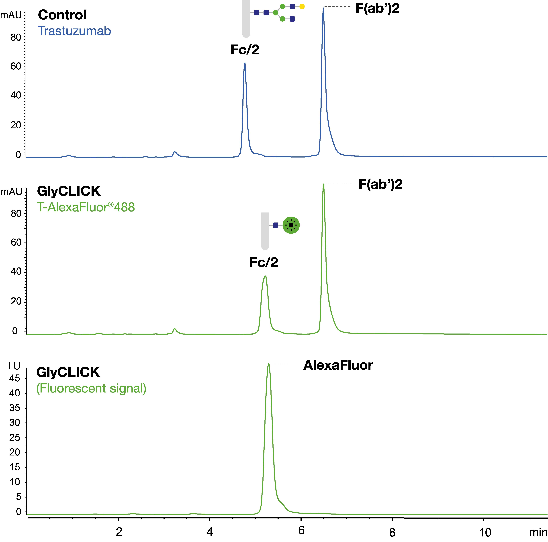 fluorescence labeling - Glyclick