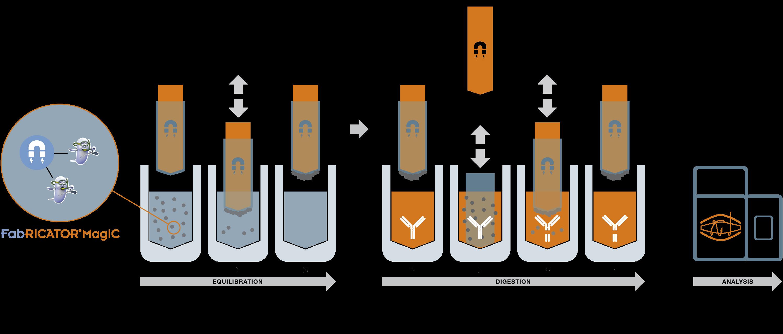 FabRICATOR MagIC workflow